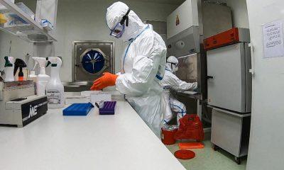 Koronawirus w Polsce.  Nowe przypadki infekcji i śmierci - 31 lipca